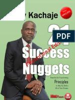 Success Nuggets eBook. Promotion