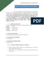 TDR - PISTAS Y VEREDAS - UCAYALI.docx