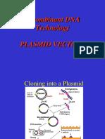 plasmids
