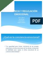 Conciencia y Regulación Emocional