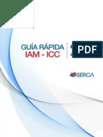 Guia Rapida IAM ICC.pdf