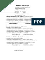 Memoria Descriptiva Sub Division (Cesar Viviano Palomino Vargas)