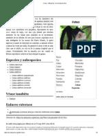Cebus - Wikipedia, La Enciclopedia Libre