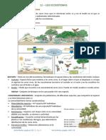 TEMA 11 - Los Ecosistemas