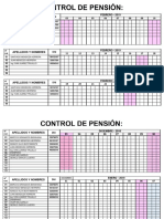 CONTROL PENSIÓN.docx