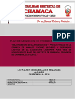 PLAN PURA VIDA 2.docx