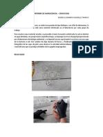 Informe de Nanociencia Discos