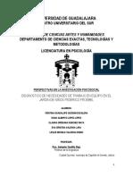 PROTOCOLO DE INVESTIGACION EN PSICOLOGIA SOCIAL