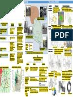 Laminafinal.pdf