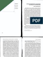 Reynoso-disputas-territoriales.pdf