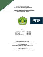 SAP RSSA FIX.doc