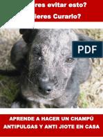 Manual Champú
