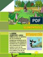 Lacadenaalimenticia 120911122649 Phpapp01 Converted