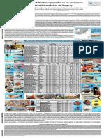 poster listado spp nombre comunes.pdf