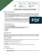 30.027.01 008 Perfil y Responsabilidades Tecnico Area
