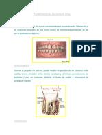 Resumen Semiologia Del Sistema Nervioso Central