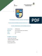 PETROLOGA.docx