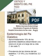 BUENA DIAPO PIE DIABETICO.pdf