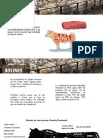 Componentes de La Carne