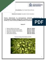 Reporte analisis microbiologico
