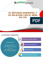 Enfoque Ambiental Prg