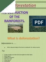 deforestation power point presentation Fiona.pptx
