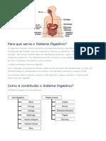 Sistema Digestivo_Site NOTA POSITIVA