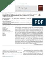 García Vázquez et al. 2019 Morphological changes in porcine cervix nulliparous vs multiparous