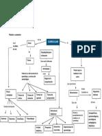 API 3 Curriculum