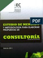 CNEC Estudio de Mercado 2013