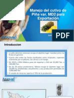 1 MANEJO INTEGRADO DE PIÑA MD2 EN MÉXICO.pdf