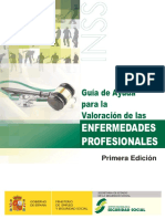 GUIA DE AYUDA PARA LA VALORACION DE ENFERMEDADES PROFESIONALES.pdf