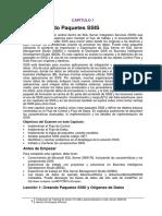 SSIS2008R2_Castellano.pdf