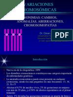 Varia.cromoso.media1495825406092