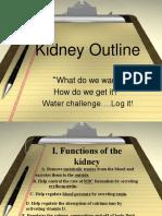 kidneyoutline