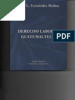 Derecho Labooral Guatemalteco..pdf