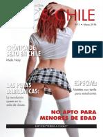 223220287-RevistaErosChile-N1-Marzo2014.pdf