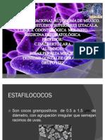 OSTEOMIELITIS ESTAFILOCOCICA