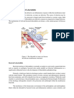 The Pathophysiology of Labyrinthitis