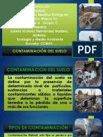 Contaminacion de Los Suelos