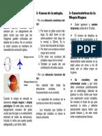 miopiamagna.pdf