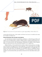 Microbiologia-aspectos-fundamentales.pdf