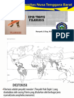 UNTB Tropis Filariasis
