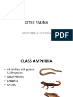 Cites Fauna