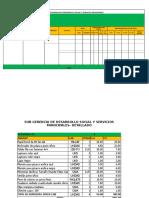 POA SUB GERENCIA DESARROLLO Social y Servicios Publicos 2019 (1)