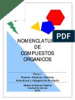 nomenclatura understanding.pdf