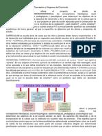 teoria currucular.docx