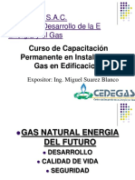 Curso-instalacion-de-gas-CEDEGAS.pdf