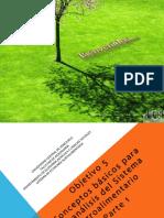 2.1 Conceptos Basicos y Analisis Del SA
