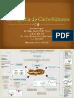 Cartografia de Carbohidratos.